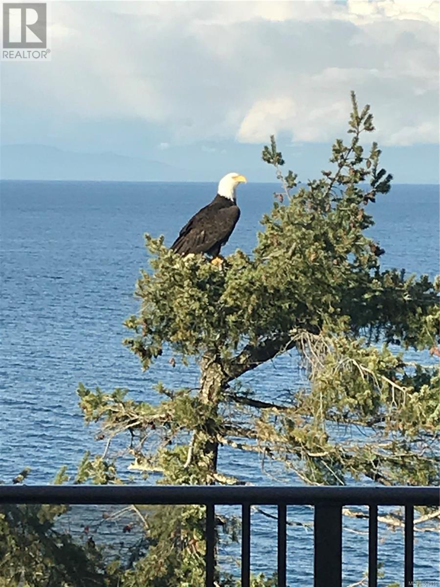 4942 Fillinger Cres, Nanaimo, British Columbia  V9V 1H9 - Photo 98 - 863810